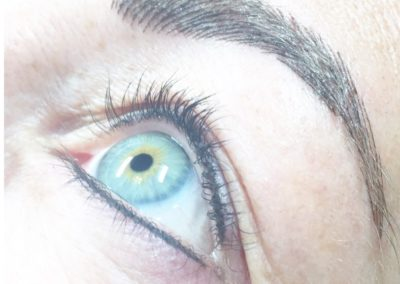 Microblading  Augenbrauen & Lidstriche